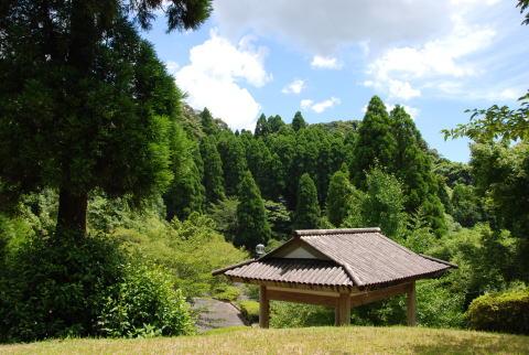 城跡内にある桜公園から眺める ...